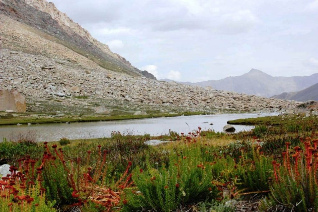 Hlticks Plateau The unexplored land of Lakes and Minerals